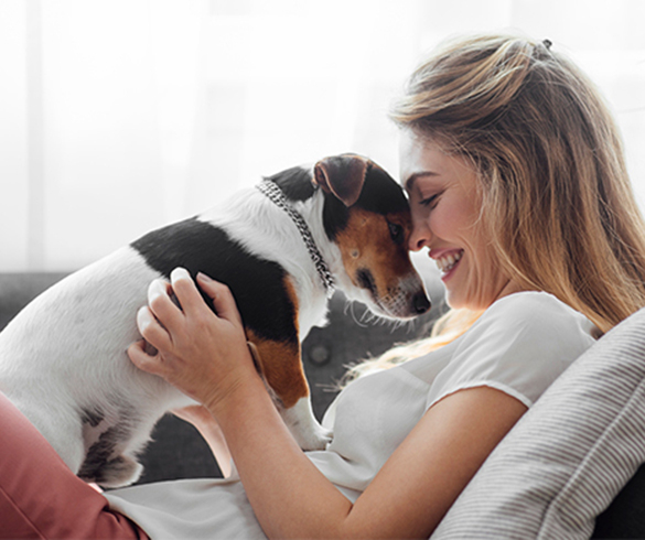 4 Mood-Boosting Benefits of Pet Ownership - 15285