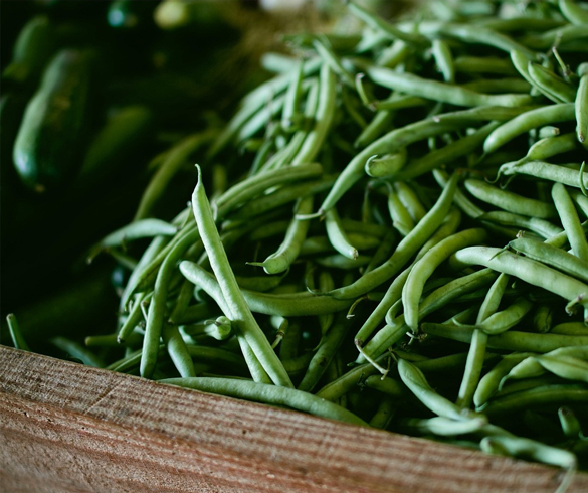 Bunch of green beans re?id=2351 re?id=3445