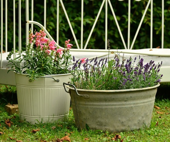 Metal cans made into flower pots