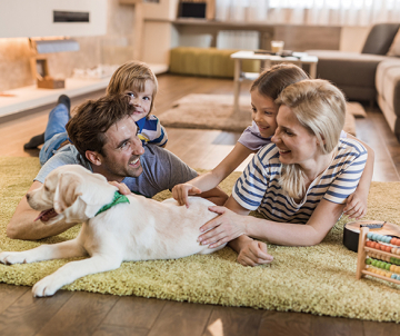 5 Tips for Bringing a New Pet Home