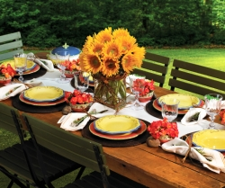 Host an Extraordinary Outdoor Bash