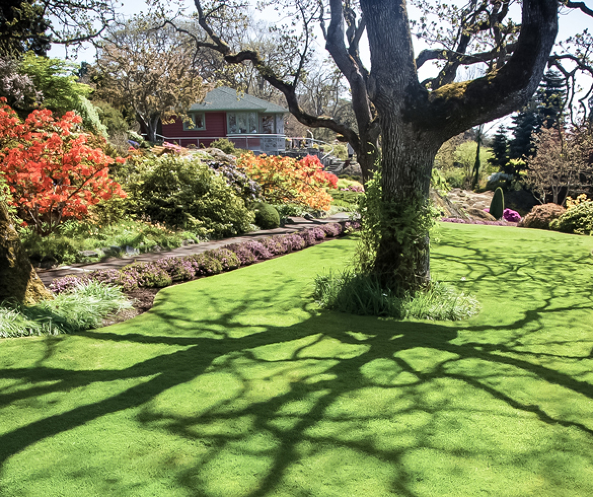Beautiful landscaped yard. re?id=4395 re?id=2339