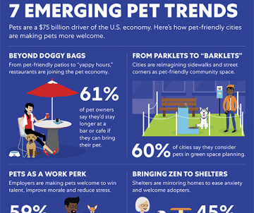 Emerging Trends in Pet-Friendly Cities