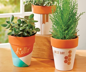 DIY Decor with Creative Containers