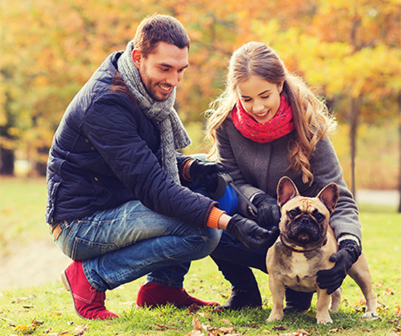 4 Ways to Treat and Trick Your Pet this Fall - 14936