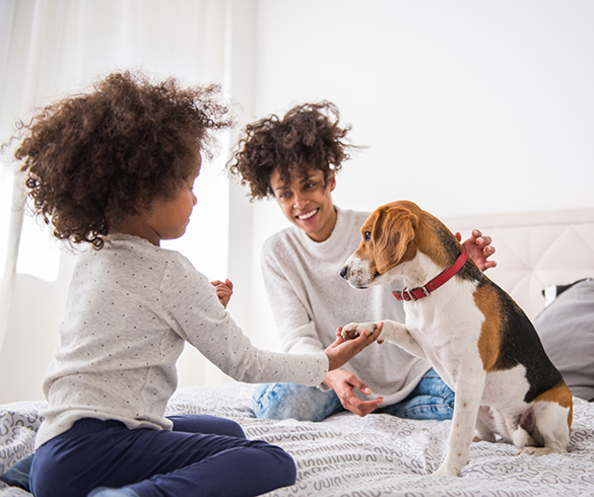 4 Ways Pets Help Impact Health and Wellness