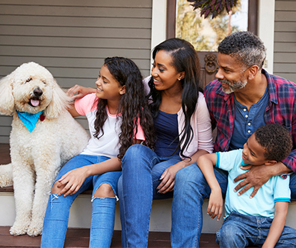 4 Things to Consider Before Adopting a Pet -15297