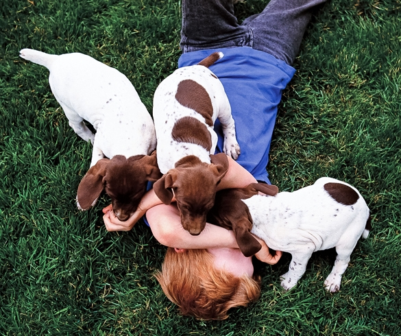 Child lying in the grass playing with puppies.