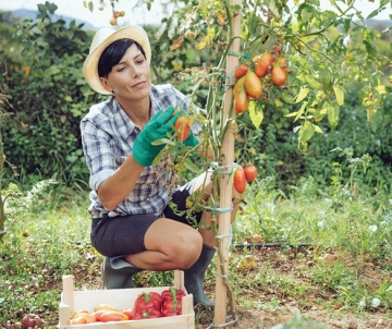 5 Tips to Get More Out of Your Backyard