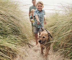 4 Stealthy Ways to Keep Your Family Healthy