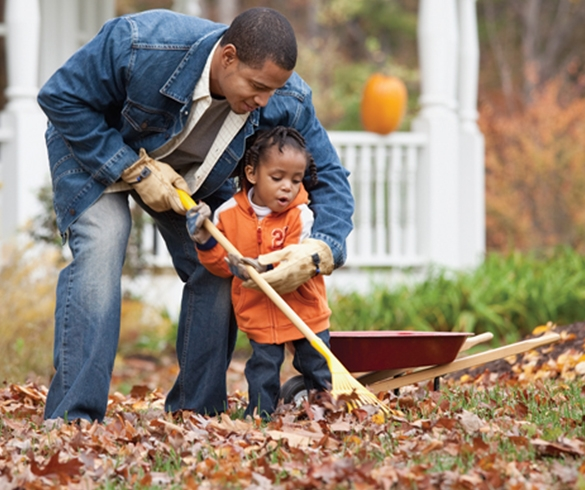 6 Tips to Prepare Your Lawn for Winter - 13949